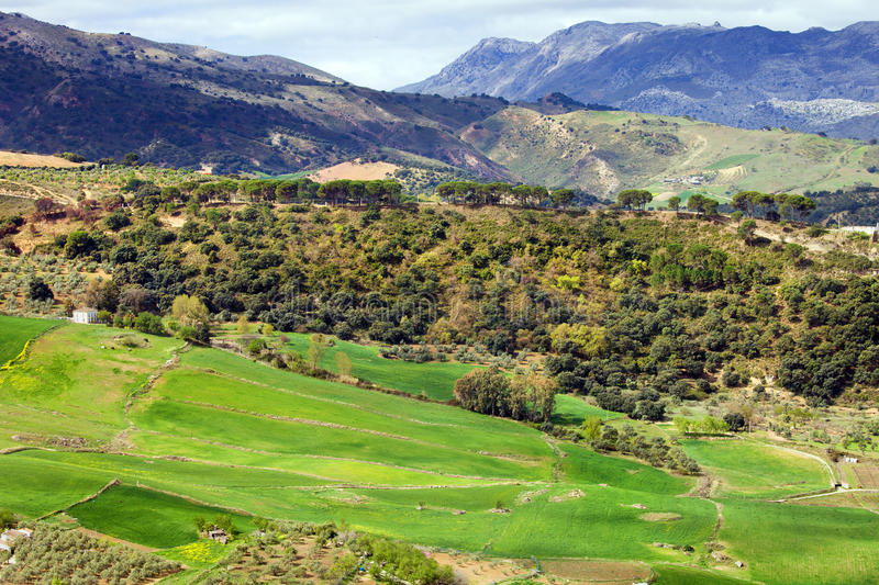 Download Andalusia Landscape stock photo. Image of landscape, hills - 25402936