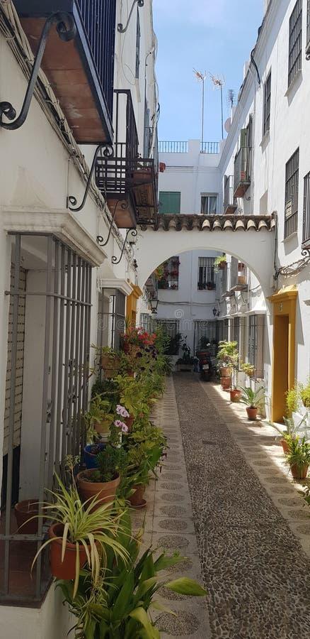 Andalusischer Blumenstraßengarten stockfotos