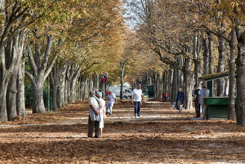 Andam as pessoas idosas ao longo da aleia velha em um dia do outono imagens de stock royalty free