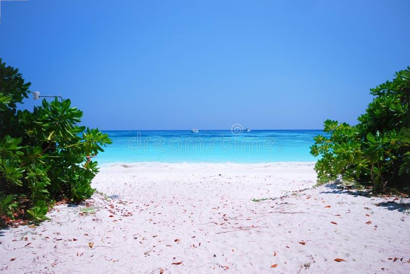 Andaman Beach. Beautiful Andaman Beach in Thailand royalty free stock photography