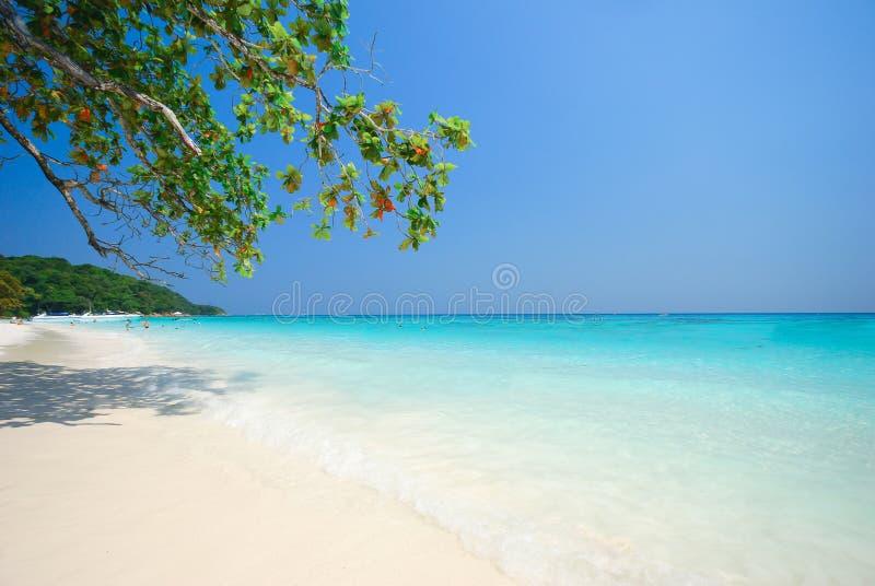 Andaman Beach. Beautiful Andaman Beach in Thailand stock image