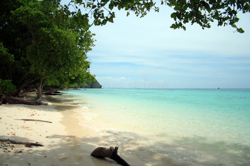 Download Andaman Beach XII stock photo. Image of dreaming, green - 1419848