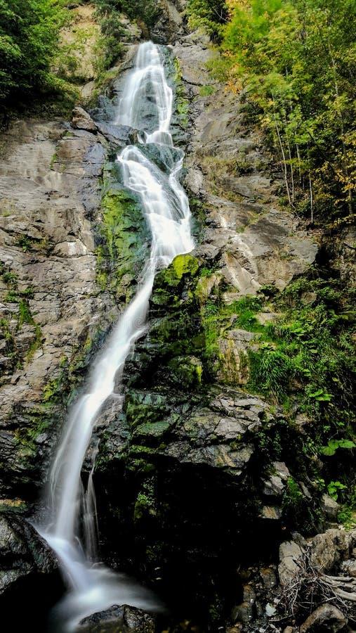 Andando através de uma floresta maravilhosa da montanha, eu descobri uma cachoeira lindo que cai de uma altura considerável de 20 imagem de stock