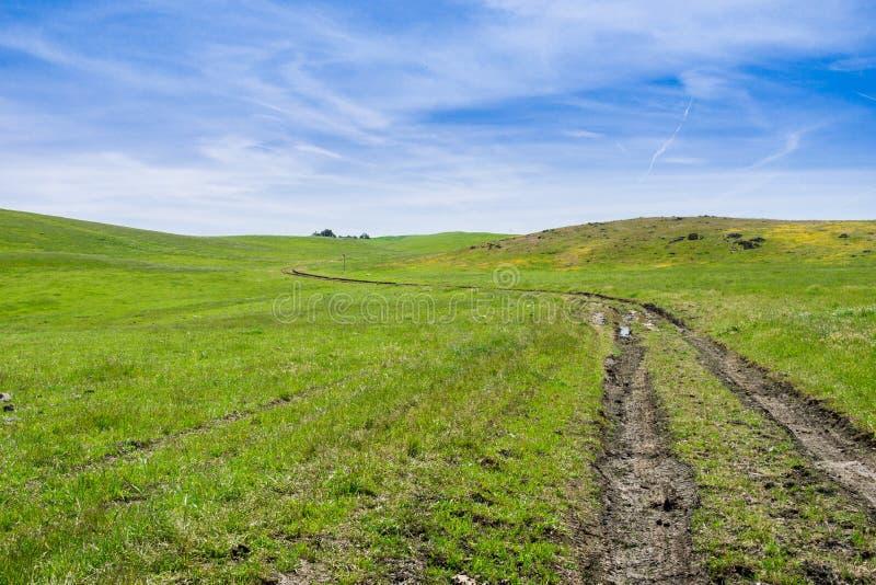 Andando/fuga de caminhada nos montes do sul San Francisco Bay, San Jose, Califórnia foto de stock