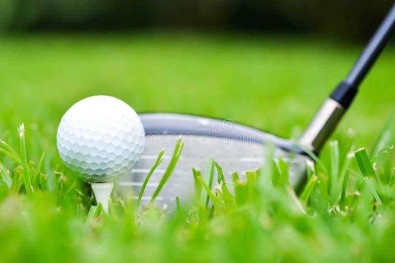 AndDriver della palla da golf fotografia stock
