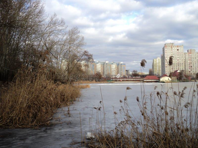 Ande no inverno pelo lago no parque foto de stock