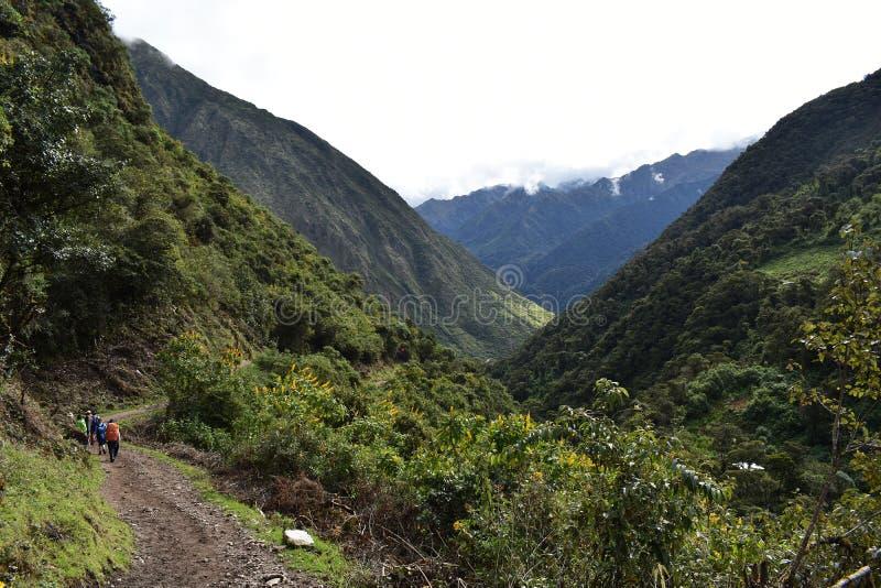 Andean berglandskap längs den Salkantay treken till Machu Picchu, Peru arkivbilder