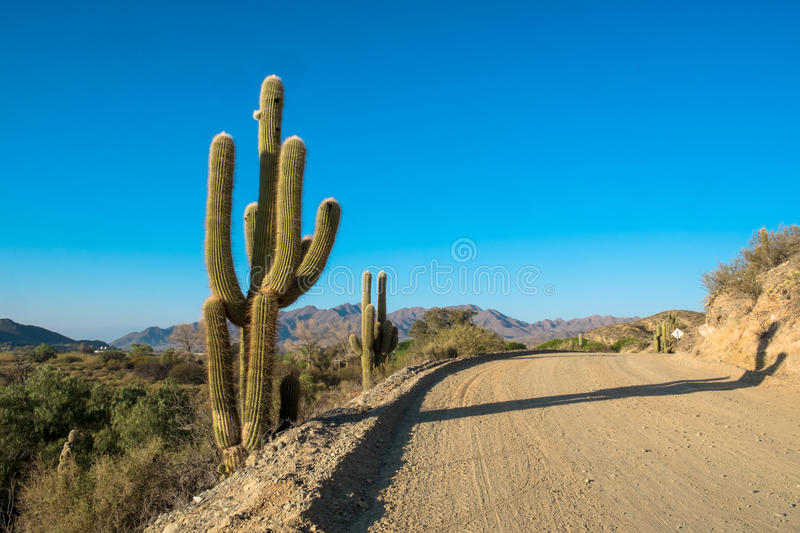 Andean dirt road royalty free stock photos