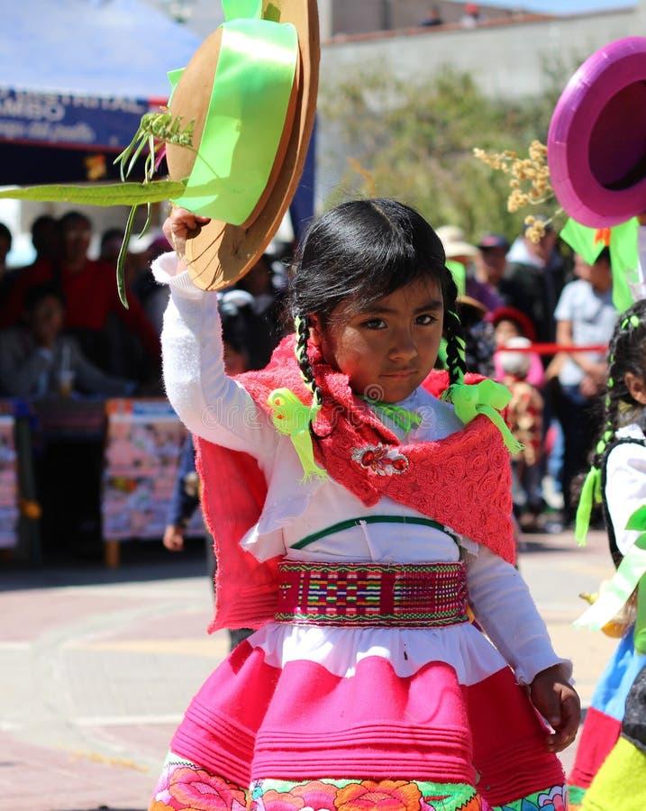 Andean flicka 3 royaltyfri bild