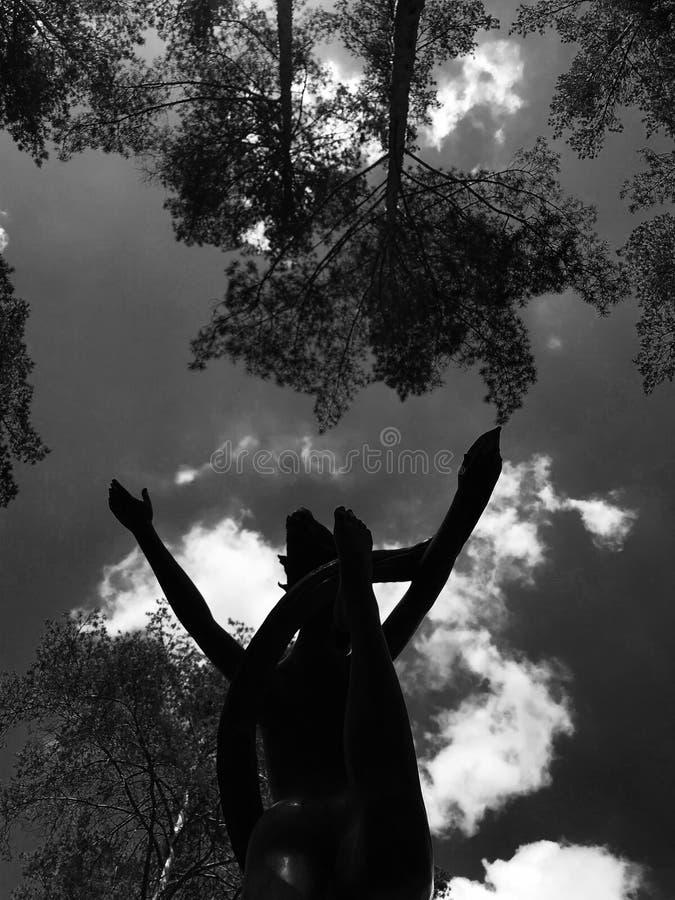 Anden av kvinnlign i svartvitt fotografering för bildbyråer