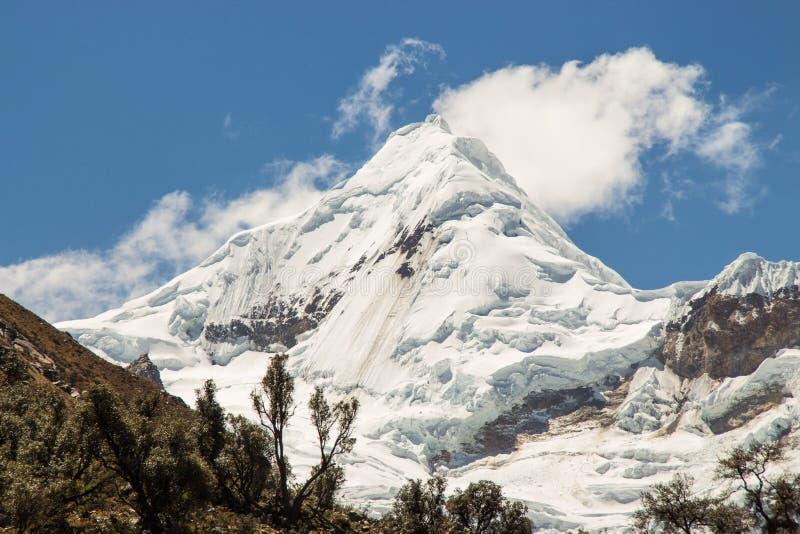 Anden-Berge mit Gletschern stockfotografie