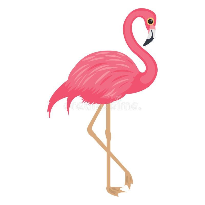 Andenflamingo, Vogel Vector Icon Isolated Vector Icon, die leicht zu ändern oder bearbeiten können lizenzfreie abbildung
