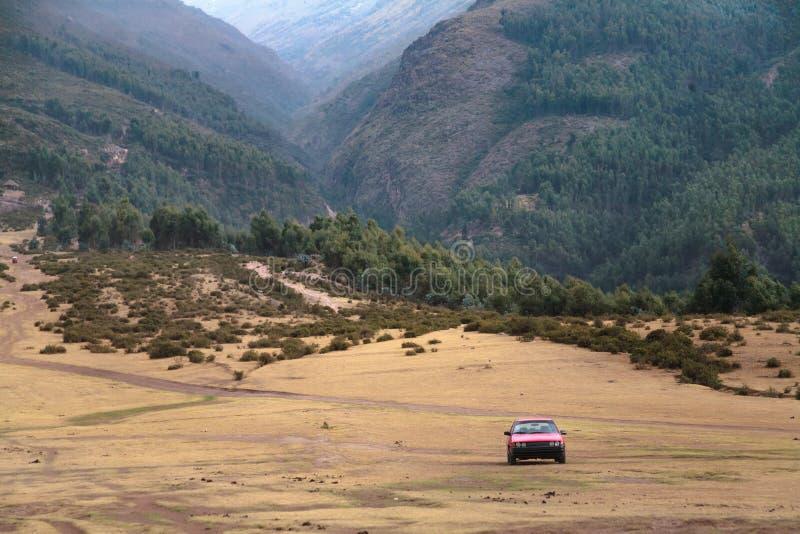 Andenlandschappen met vegetatie in Peru stock foto's