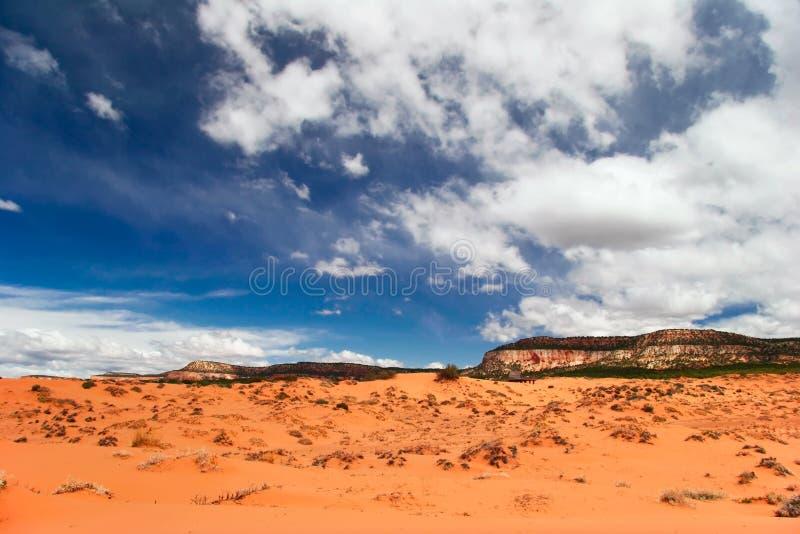 ander diuny menchii piaska niebo obrazy royalty free