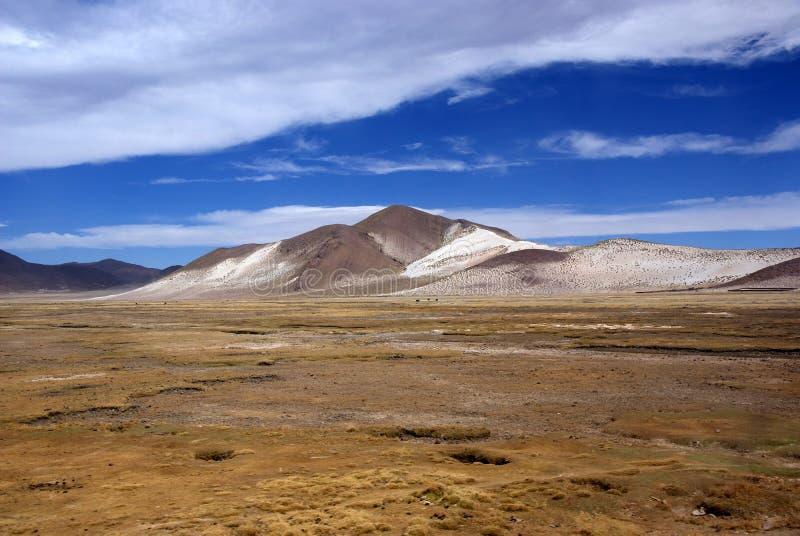 Andes e deserto de atacama, Uyuni, Bolívia foto de stock royalty free
