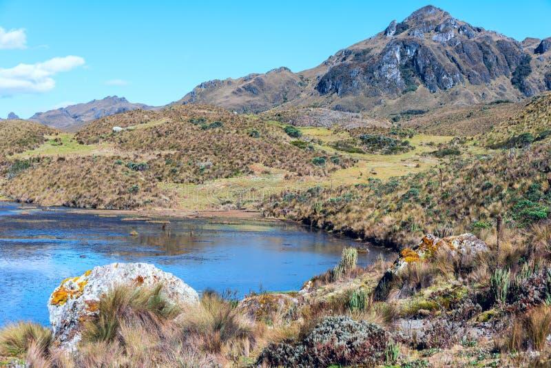 andes Parc national de Cajas, Equateur photo libre de droits