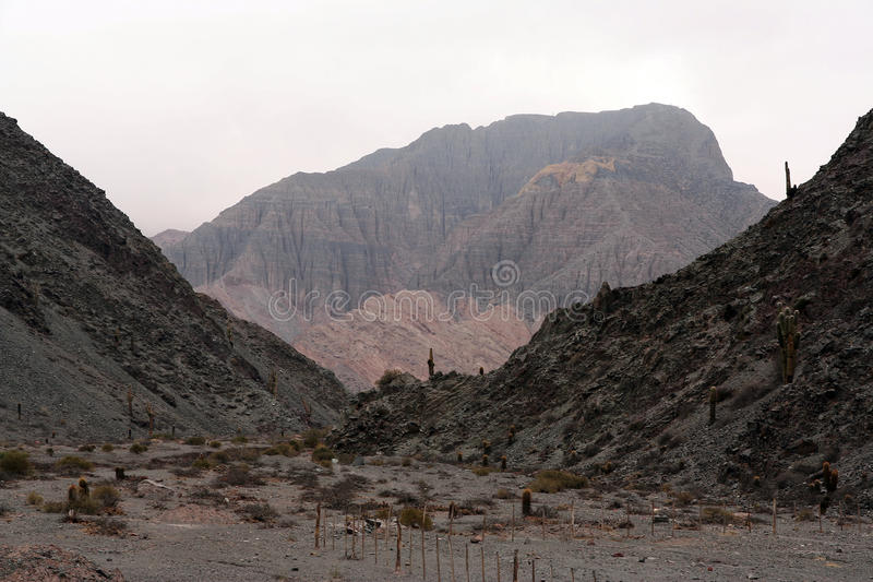 The Andes in Salta province, Argentina royalty free stock photography