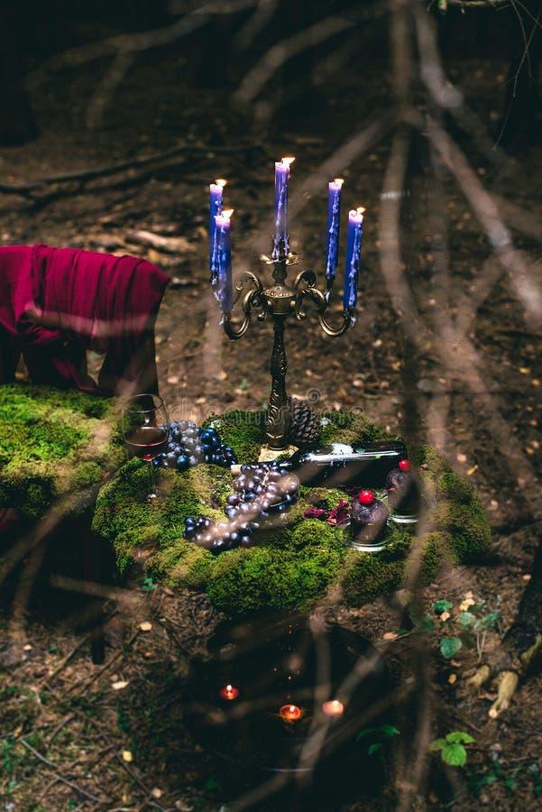 ? andles в лесе стоковое фото