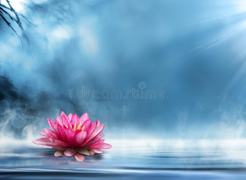 Andlighetzen med waterlily royaltyfri illustrationer