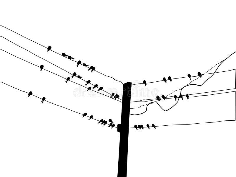 Andorinha da migração da silhueta ilustração stock
