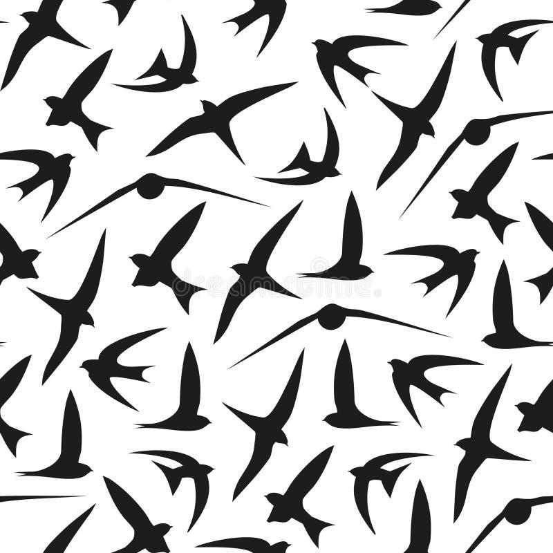 Andorinha, rápida, pássaros Teste padrão gráfico do vetor Fundo sem emenda decorativo ilustração stock