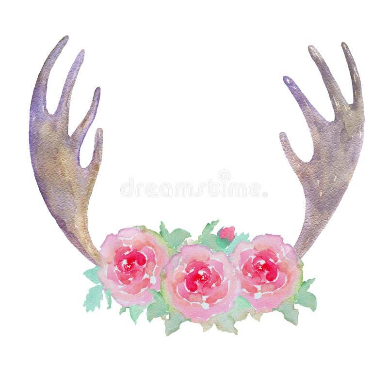 Andouillers d'élans d'aquarelle et roses roses d'isolement sur le fond blanc illustration de vecteur