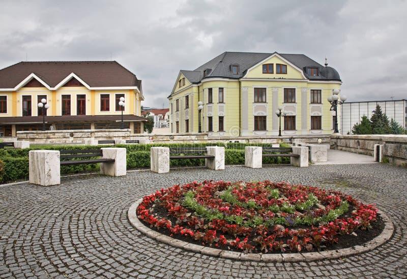 Andrej Hlinka广场在Zilina 斯洛伐克 免版税库存图片