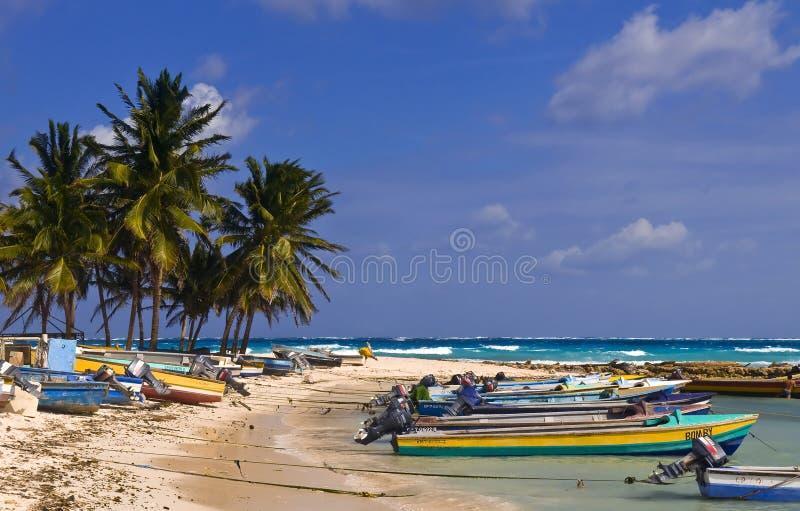 andres哥伦比亚海岛圣 免版税图库摄影