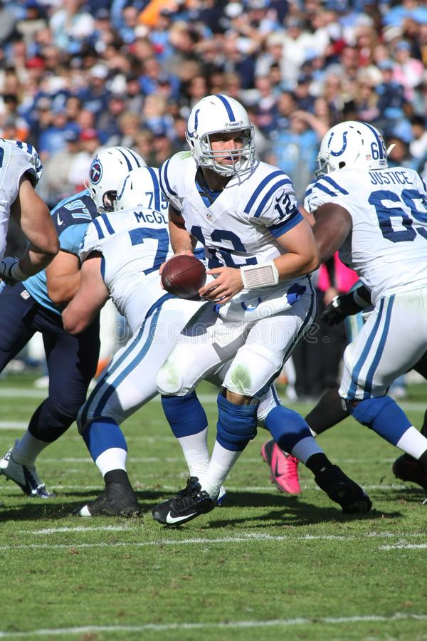 Andrew Luck Indianapolis Colts imagens de stock royalty free