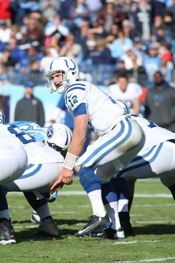 Andrew Luck Indianapolis Colts fotografia de stock royalty free