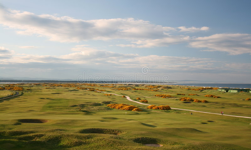 andrews golfbanast royaltyfri fotografi
