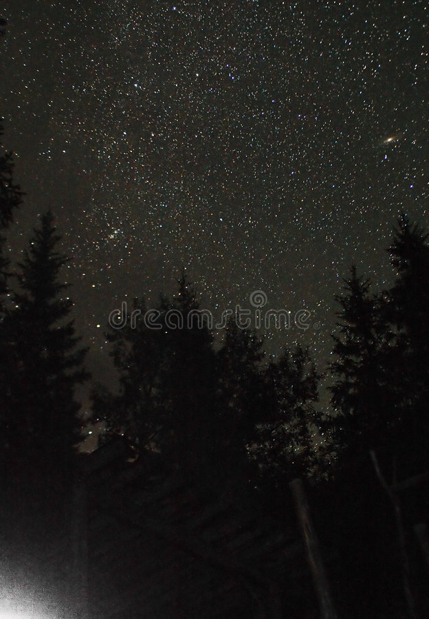 Andromeda under forest royalty free stock photography