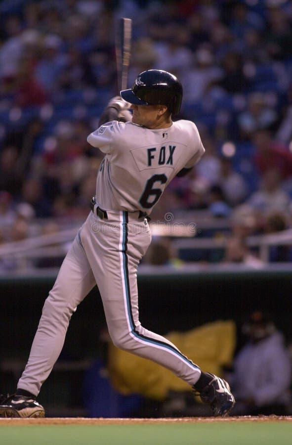 Andy Fox photos stock