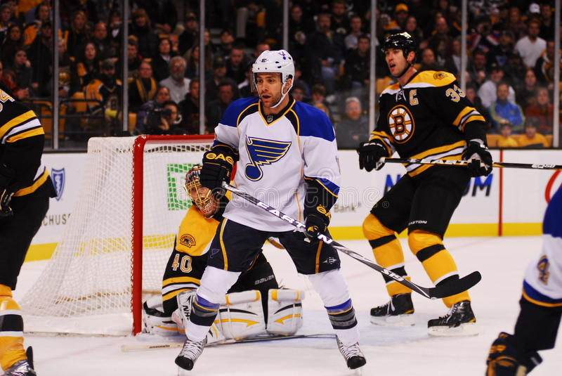 Andy McDonald St. Louis Blues. Blues Forward Andy McDonald sets up in the Bruins goal to create a screen in front of Bruins goalie Tuukka Rask stock image