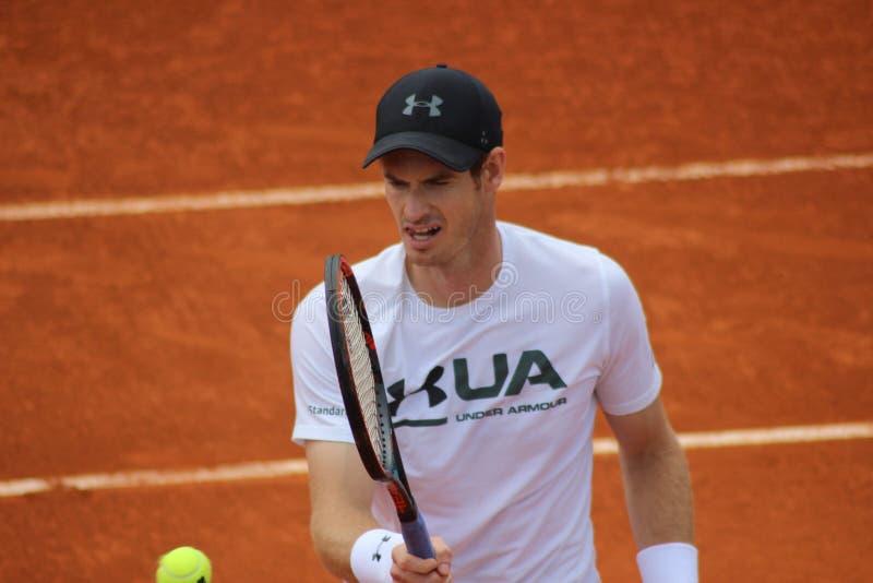 Andy Murray stockbild