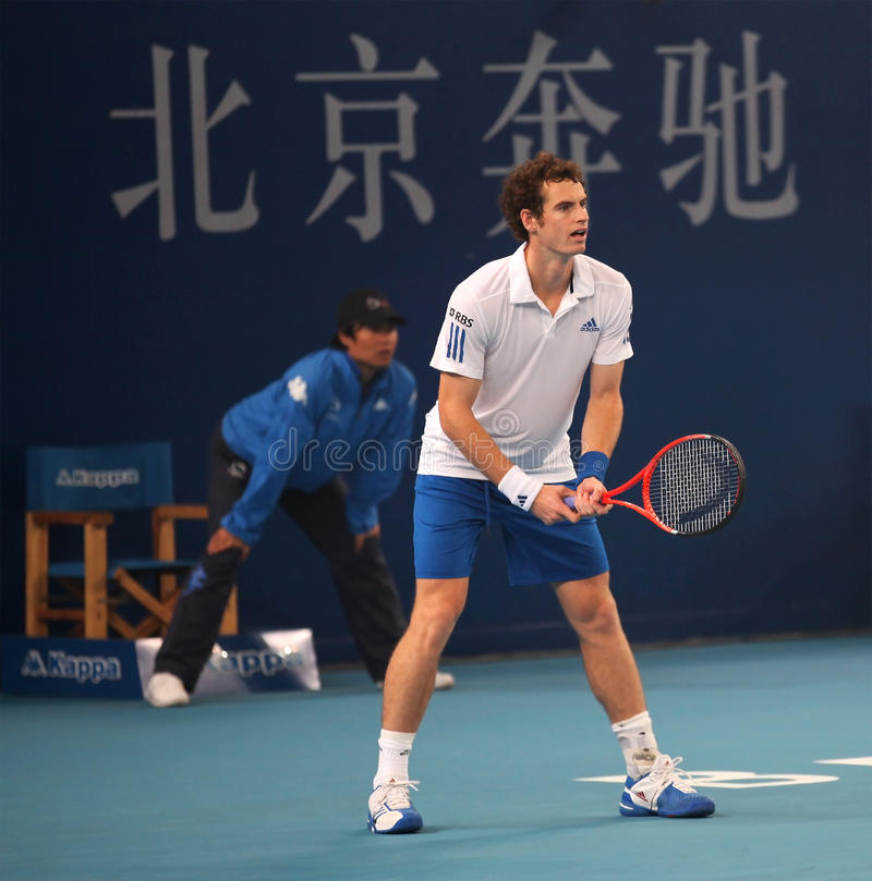 Andy Murray zdjęcie royalty free