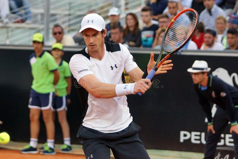 Andy Murray (GBR) immagini stock libere da diritti