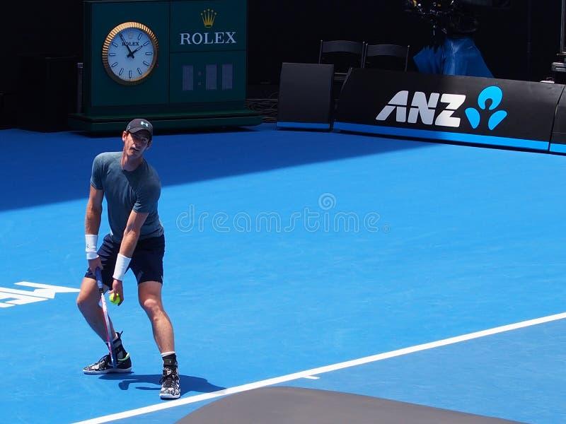 Andy Murray no 2019 aberto australiano imagens de stock royalty free