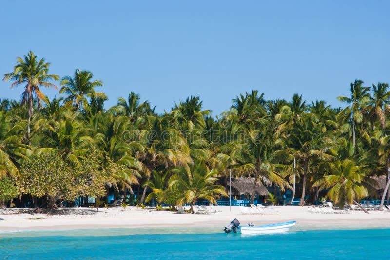 Andy strand op de bank van het tropische overzees royalty-vrije stock afbeelding