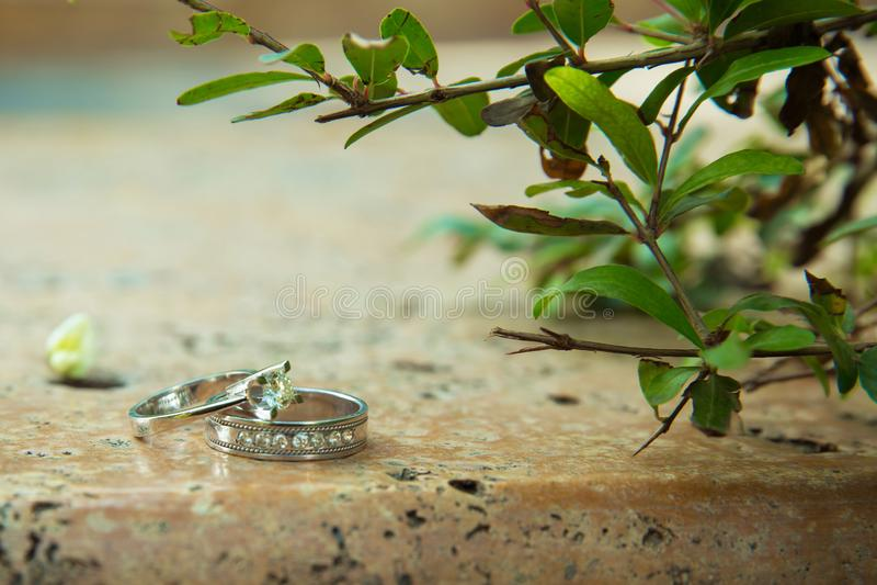 Aneis de noivado na natureza, fundo verde História de amor Alianças de casamento em um fundo bonito do ramo da folha No mármore e imagens de stock royalty free