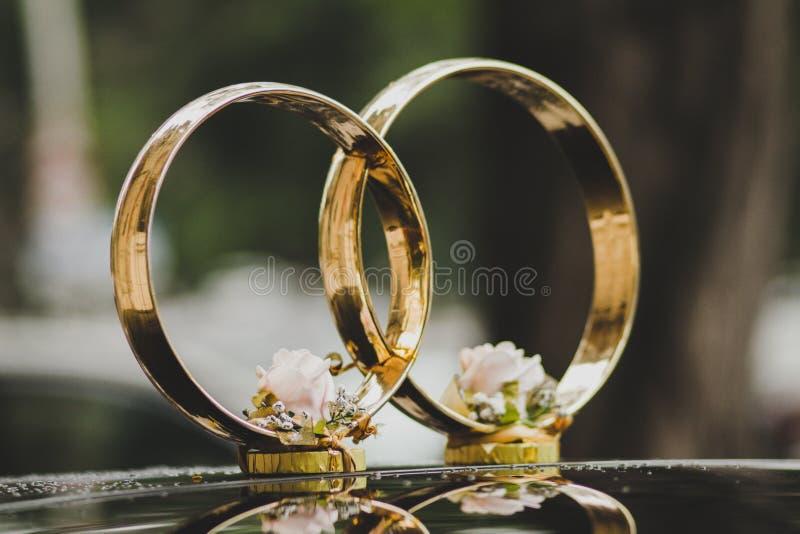 anel fotografia de stock royalty free