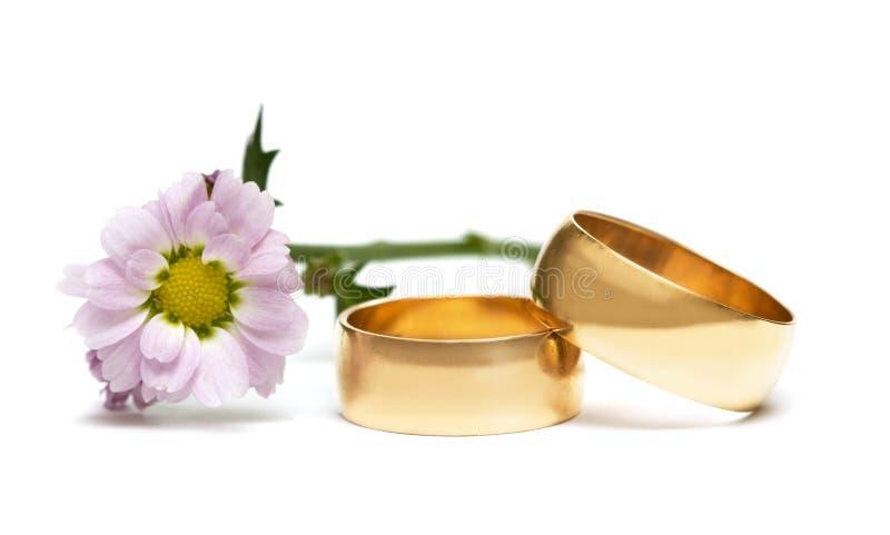 Anelli di cerimonia nuziale con il fiore fotografia stock