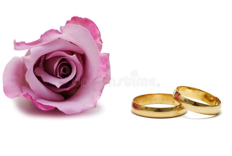 Anelli di cerimonia nuziale e una rosa. fotografia stock libera da diritti