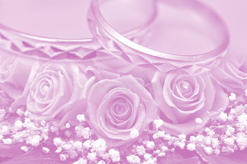 Anelli e rose rosa immagine stock libera da diritti