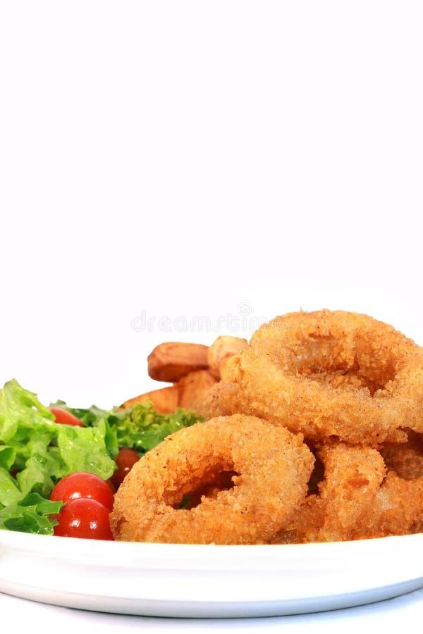 Anello del Calamari del calamaro fotografia stock libera da diritti