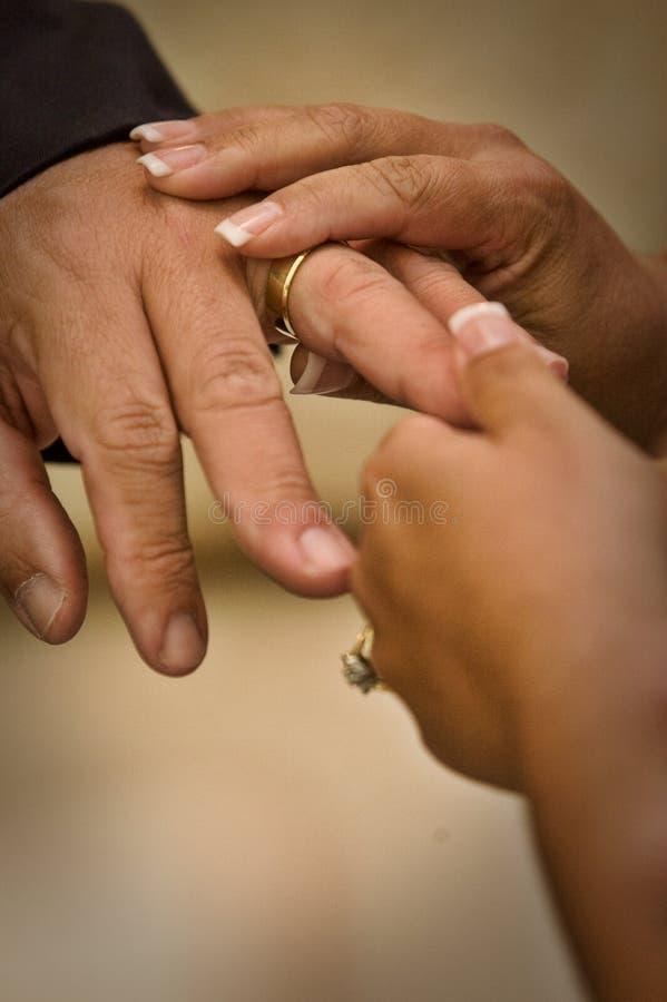 Anello di cerimonia nuziale immagini stock libere da diritti