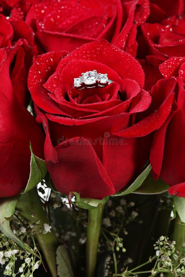 Anello di diamante in una rosa immagine stock libera da diritti