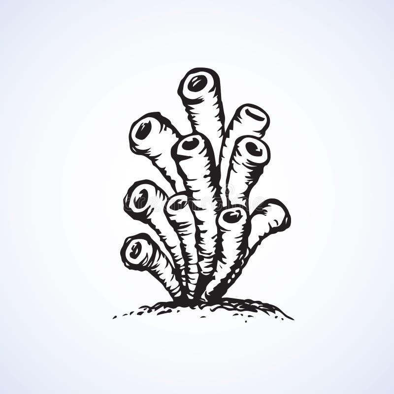 anemonakvarium inget hav som tas wild Vektorn skissar royaltyfri illustrationer