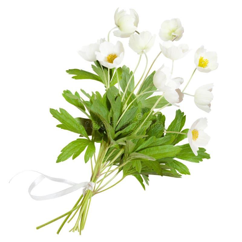 anemonbuketten blommar white arkivbilder