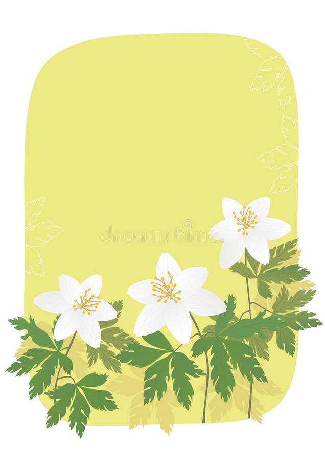 Anemone ilustração stock